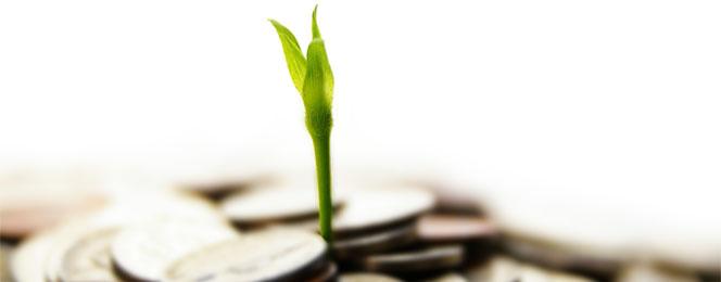 سود بانک صادرات کوتاه مدت
